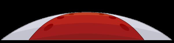 alfombra roja1 (2)
