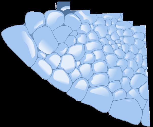 fondo iglu